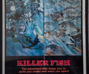 killer-fish