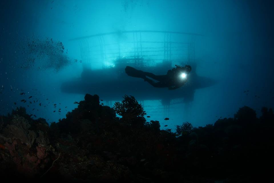 st croix scuba scandi divers resort (12)