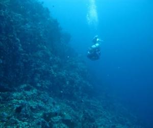 verde-island-puerto-galera (18)