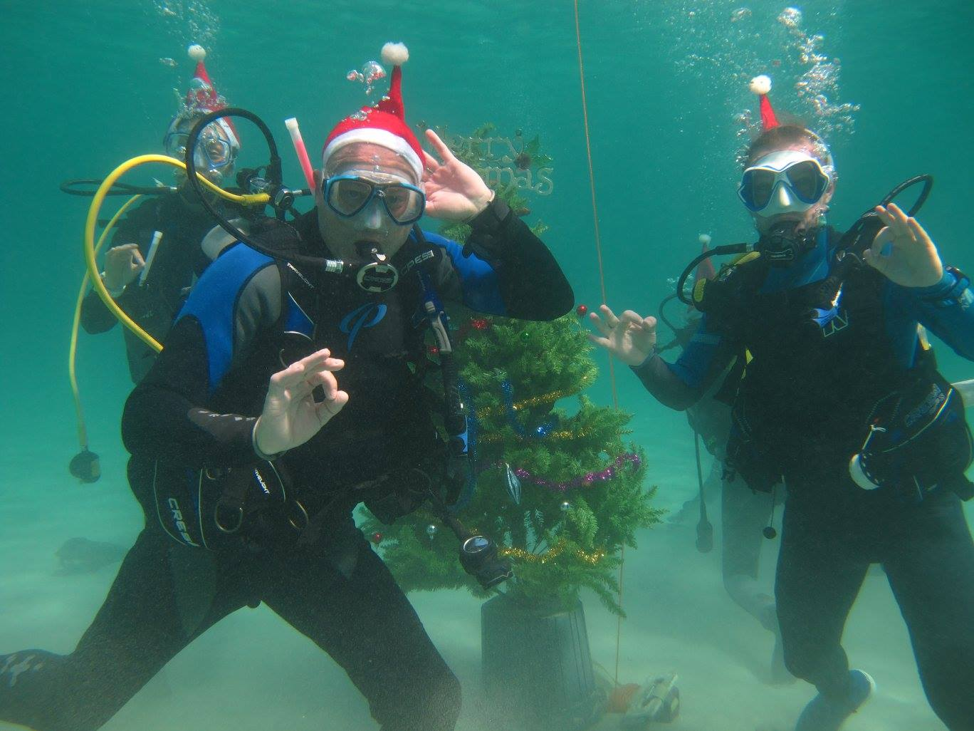 scandi divers resort christmas scuba (1)