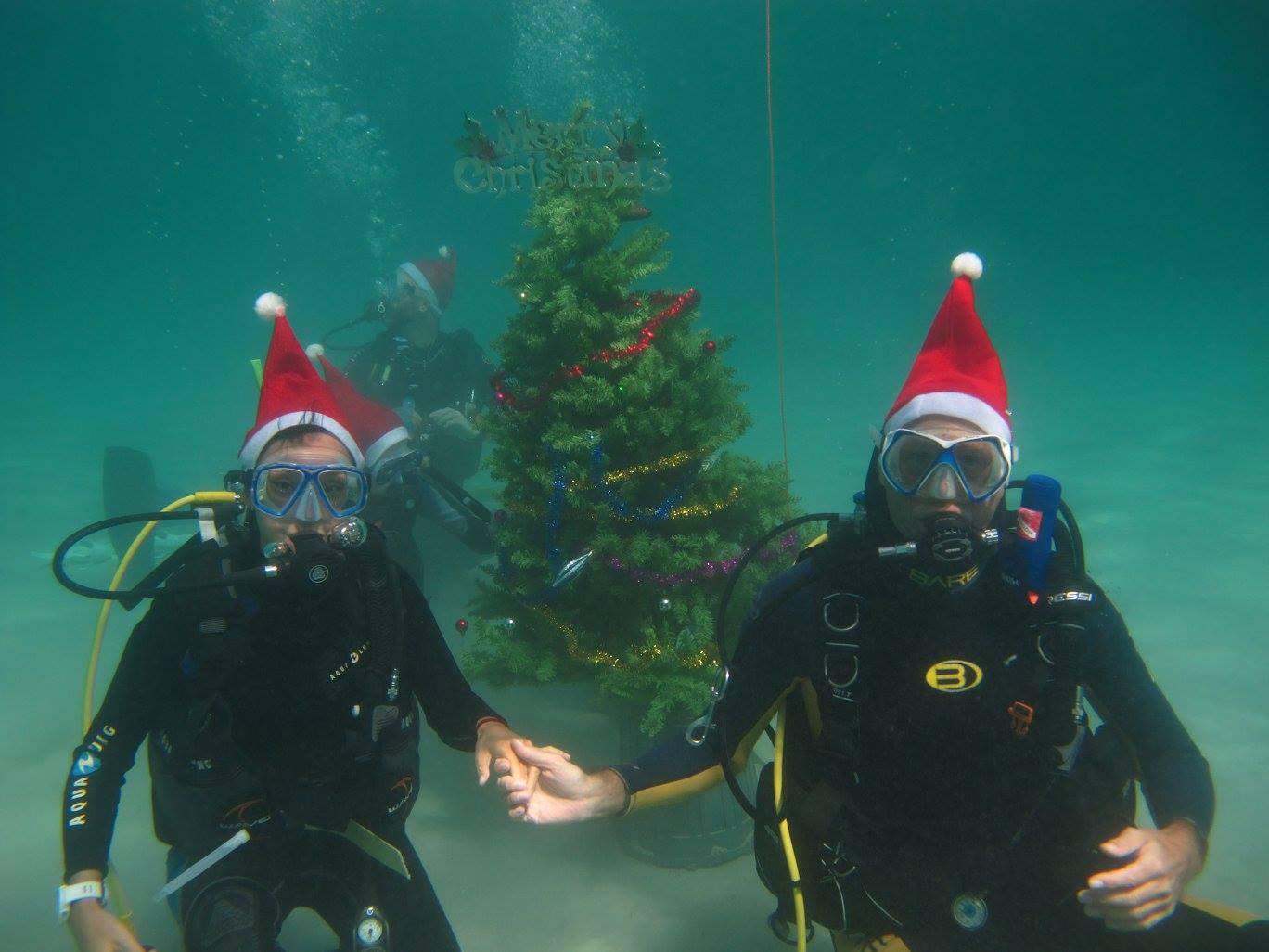 scandi divers resort christmas scuba (10)