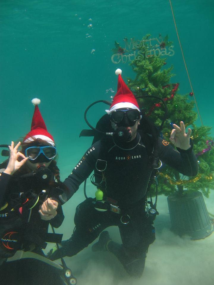 scandi divers resort christmas scuba (11)