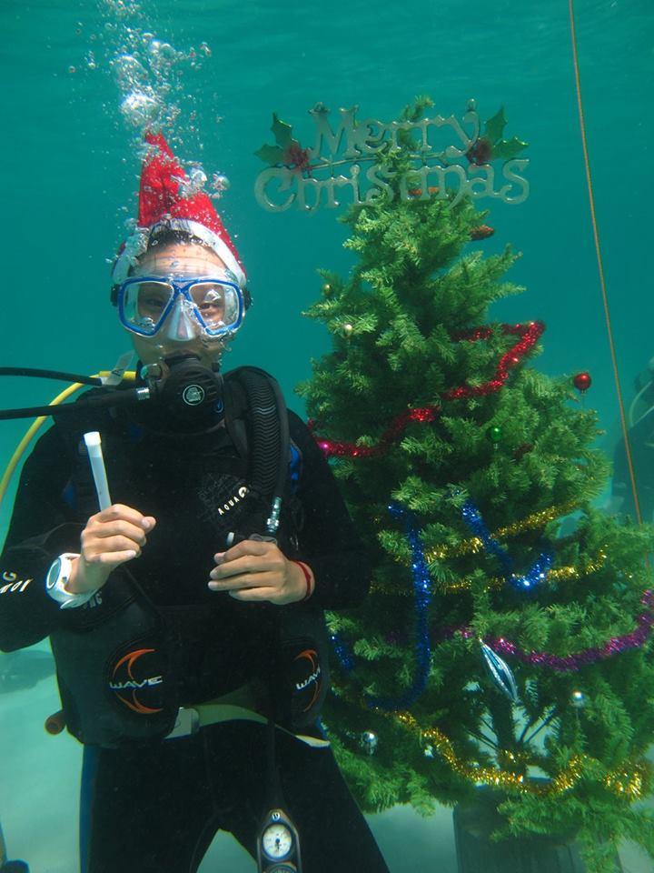 scandi divers resort christmas scuba (12)