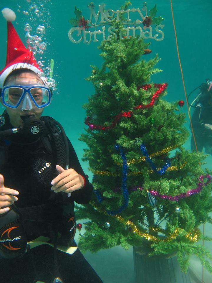 scandi divers resort christmas scuba (14)