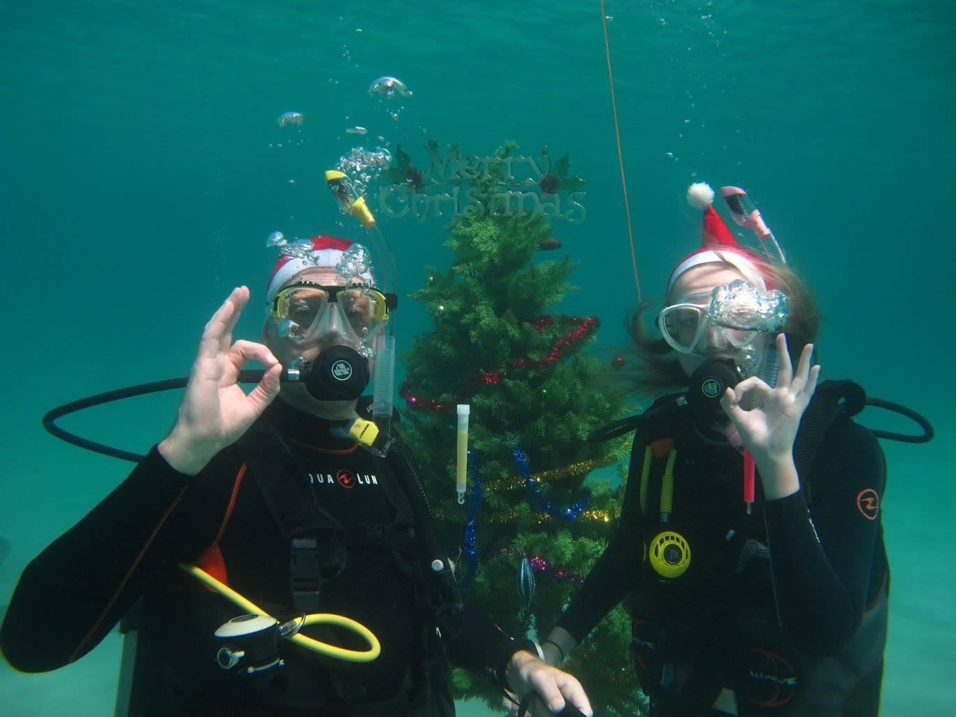 scandi divers resort christmas scuba (15)