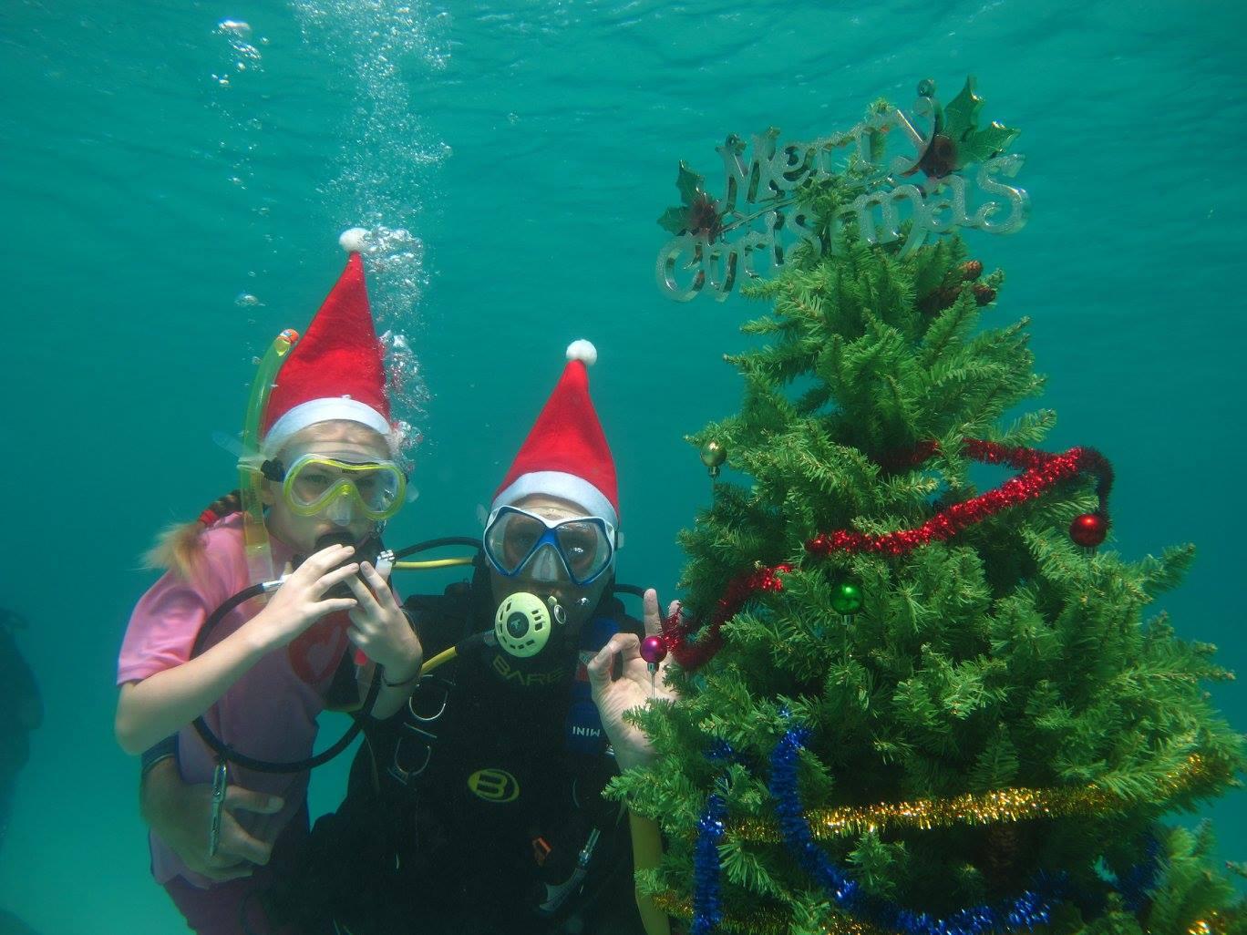 scandi divers resort christmas scuba (16)