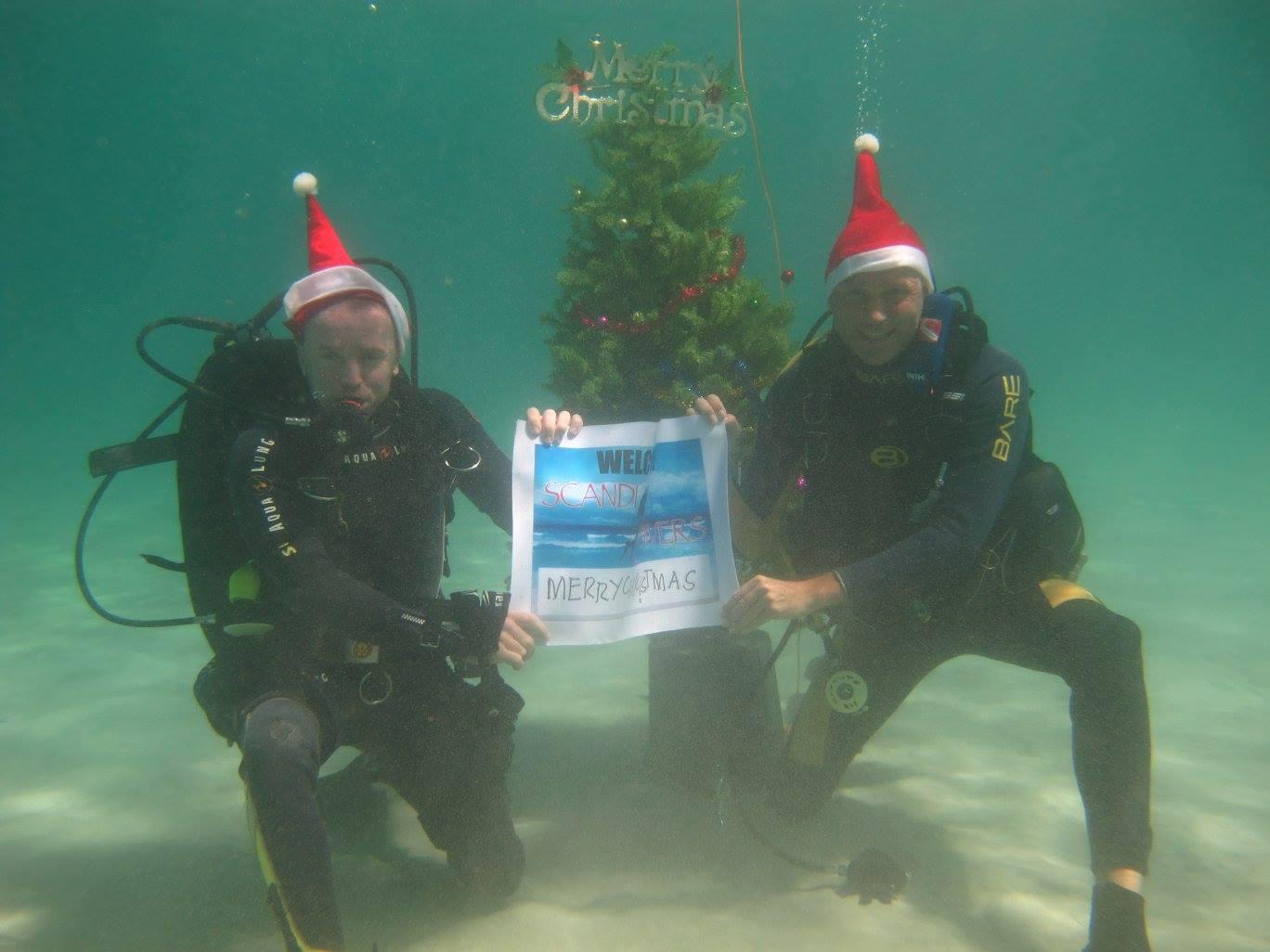 scandi divers resort christmas scuba (17)