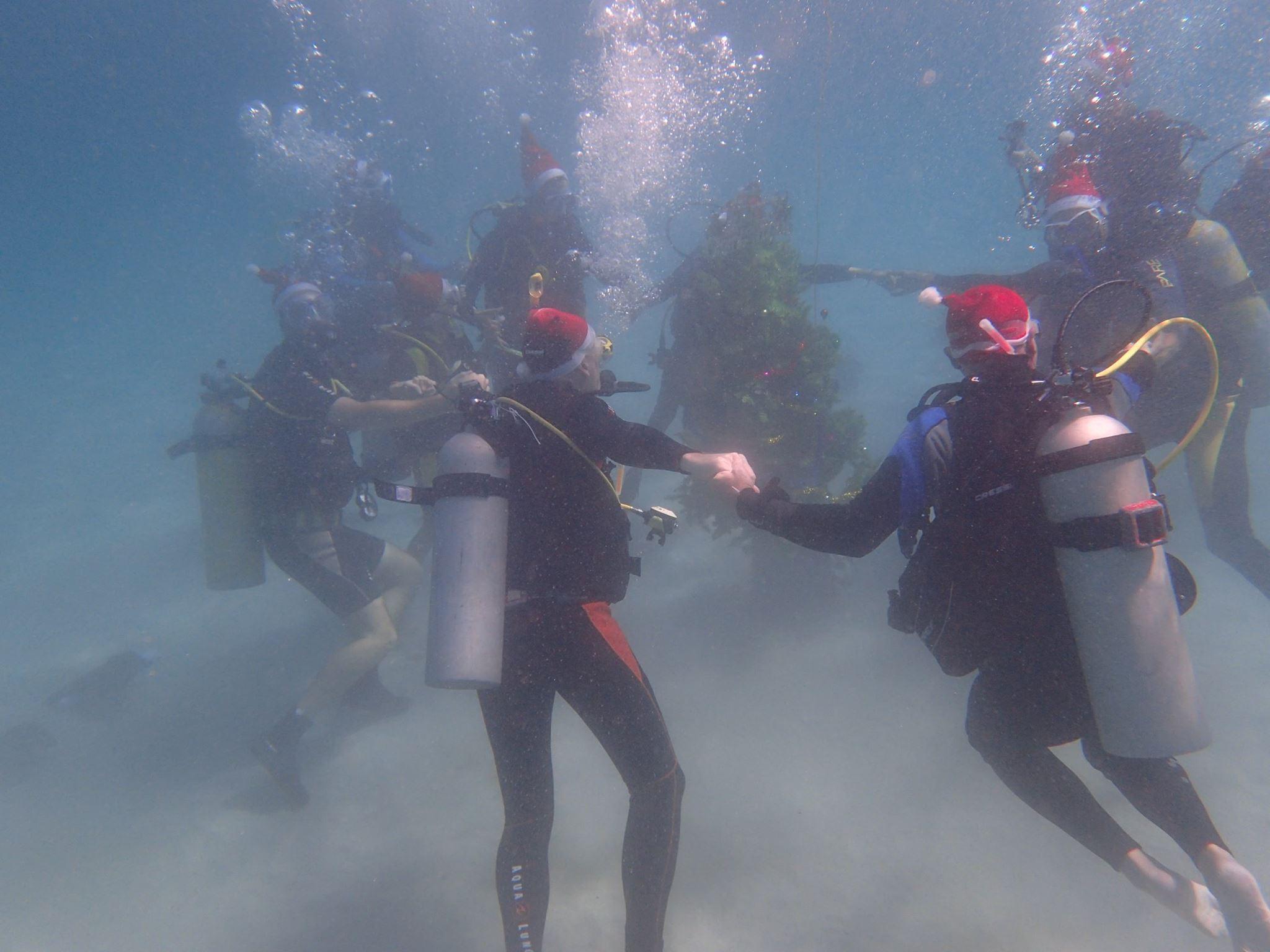 scandi divers resort christmas scuba (4)